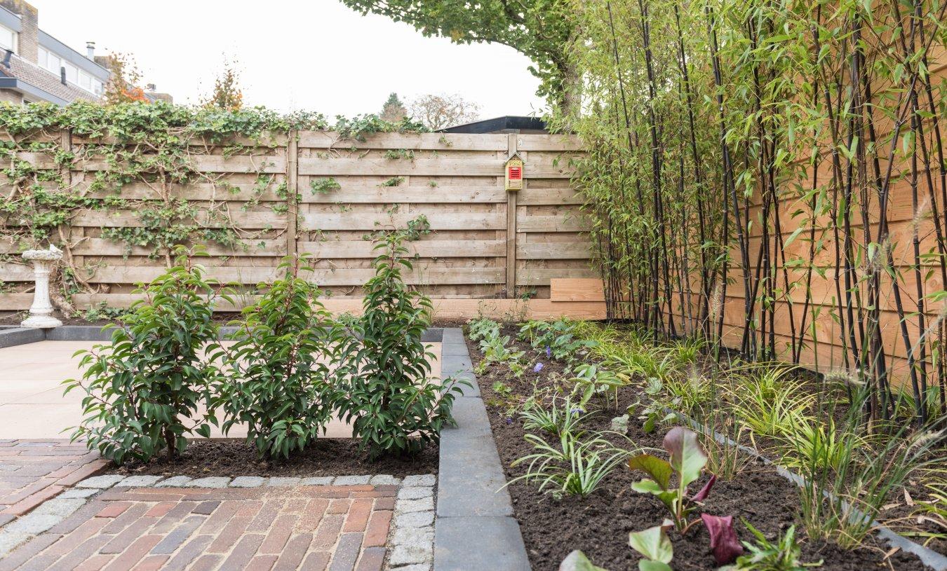 Wonderbaar Onderhoudsvriendelijke tuin Nijkerk – foto's   Feenstra Hoveniers OA-98